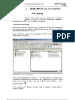 P_1 ArcCatalog