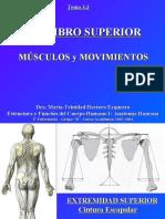 4.2 Miembro Superior Musculos y Movimientos  (1).ppt
