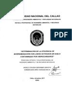 Geronimo.pdf