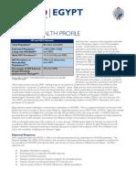 Egypt AIDS Profile USAID