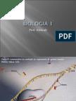 Biologia PPT - Aula 13 Ácidos Nucleicos