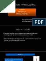 DIAPO TEORIA - clase 7 osteoarticular