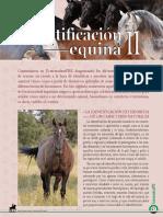 Dialnet-IdentificacionEquinaII-5999452