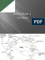 Biologia PPT - Aula 15 Respiração Celular