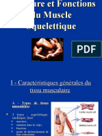 4.contraction_musculaire (1)