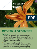 06 - Sex in Plants