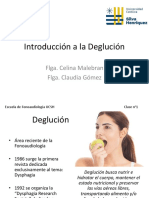 clase n°1. Deglución. (1).pdf