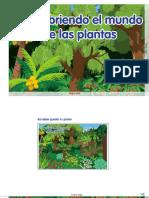 6_U4 Las Plantas