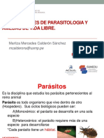TEORIAS SEMANA 1.pdf