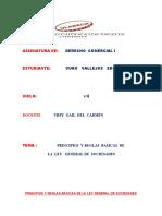 Principios y reglas  basicas  del la ley  general de sociedades.docx