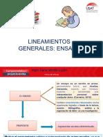 01 LINEAMIENTOS GENERALES DEL ENSAYO
