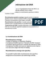 La ricombinazione del DNA