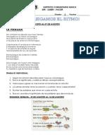 GUIA DE ESPANÞOL AGOSTO.pdf