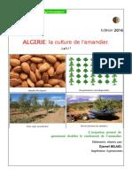 BrochureAmandier.pdf