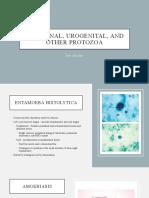 Intestinal, urogenital, and other protozoa