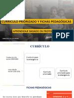 EJEMPLO ABP CURRICULO PRIORIZADO DE EMERGENCIA