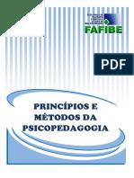 Principios e Métodos  da Psicopedagogia-1