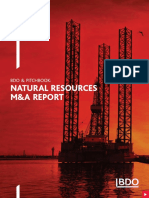191010 BDO Natural Resources M&A Report