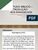 Estudo bíblico – introdução aos evangelhos - Aula 2