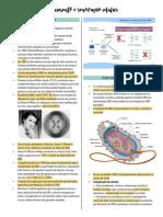 Resumo Crescimento e renovação celular.pdf