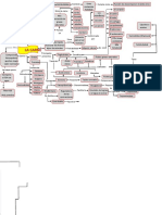 mapa conceptual la carne (1)
