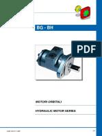 BG Motor - Sam hydraulic