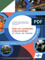 10 Dicas do sebrae para o Candidato - SEBRAE.pdf