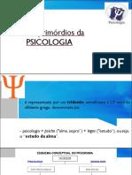 Psi 10 - Descobrindo a Psicologia.pdf
