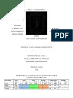 Termo informe arequipe (1)