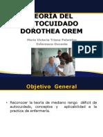 DOROTEAM TEORISTA.pdf