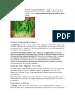Especie vegeta1