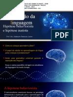 02 teorias da aquisição da linguagem parte 1.pptx