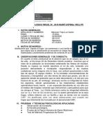 Mezones Luz Clarita Informe evolutivo junio 2019 pdf.pdf