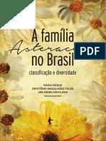 a-familia-asteraceae-no-Brasil-RI.pdf