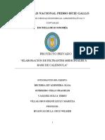 PROYECTO-MODELO.docx
