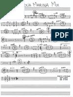 AGUA MARINA MIX(POMALIA)-1-1.pdf