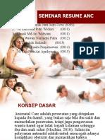 23597_23567_ppt maternitas