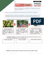 FICHA 2 SESIÓN 2 EXP 1 PERSONAL SOCIAL SEXTO GRADO - OCTUBRE 2020
