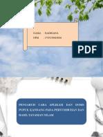 PPT Presentation