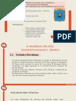 TRANSICIÓN PALEOZOICO TRIÁSICO_GEOLOGÍA DEL PERÚ