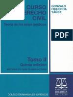 CURSO DE DERECHO CIVIL TOMO II - Figueroa Yáñez, Gonzalo.pdf
