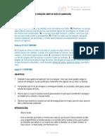 UN CORAZÓN LIBRE DE RAÍZ DE AMARGURA.pdf