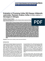 Evaluation of Promising Coffee Wilt Disease (Gibberella xylarioides) Resistant Arabica Coffee (Coffea arabica L.) Genotypes in Ethiopia