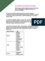 PRINCIPALES FAMILIAS INDÍGENAS QUE POBLARON A COLOMBIA