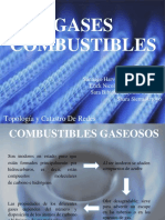 PRESENTACION GASES COMBUSTIBLES.pdf