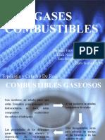 PRESENTACION GASES COMBUSTIBLES.pptx