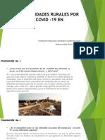 NUEVAS REALIDADES RURALES POR LA PANDEMIA COVID -19 anthony romo 11-5.pptx