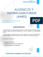 aines pdf.pdf