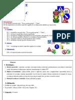 proiect_didactic_cum_circulam.docx