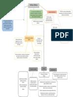 politicas publicas mapa conceptual